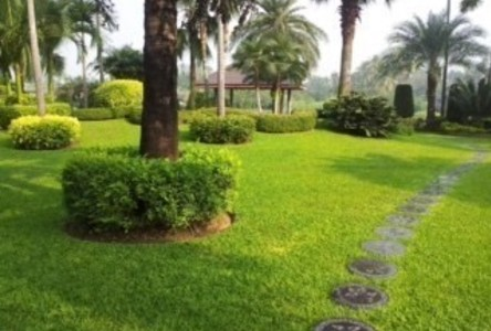 For Sale 6 Beds House in Nakhon Chai Si, Nakhon Pathom, Thailand