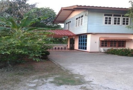 For Rent 3 Beds 一戸建て in Mueang Khon Kaen, Khon Kaen, Thailand