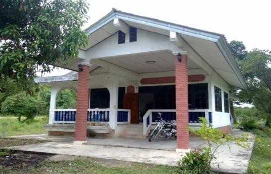 ให้เช่า บ้านเดี่ยว 2 ห้องนอน ไชยา สุราษฎร์ธานี   Ref. TH-CADNCAJJ