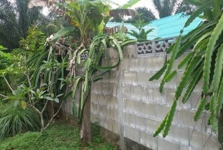 For Sale or Rent 2 Beds House in Tha Chana, Surat Thani, Thailand