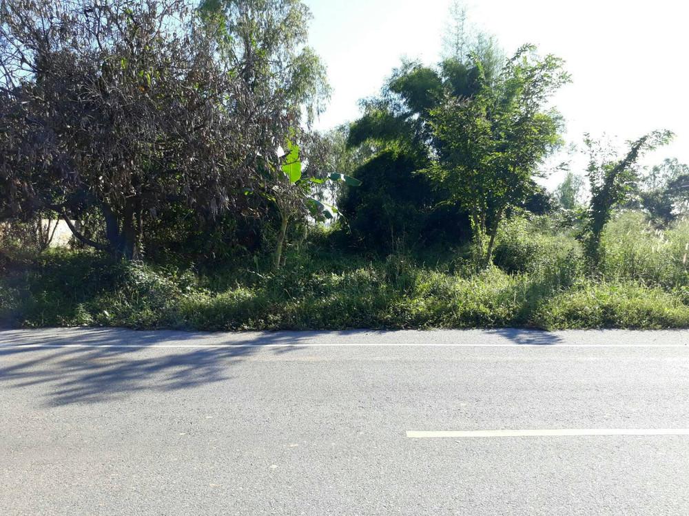 Продажа: Земельный участок 3-2-95 рай в районе Mueang Phitsanulok, Phitsanulok, Таиланд | Ref. TH-SPGPICPB