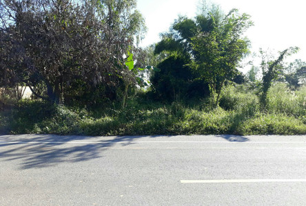 For Sale Land 3-2-95 rai in Mueang Phitsanulok, Phitsanulok, Thailand
