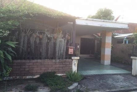 For Sale 3 Beds Townhouse in San Sai, Chiang Mai, Thailand
