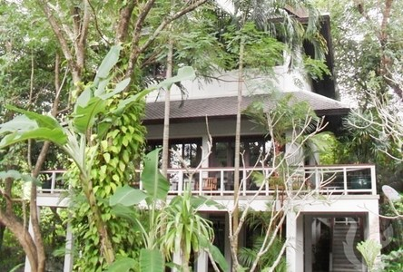 For Rent 2 Beds House in Mueang Phuket, Phuket, Thailand