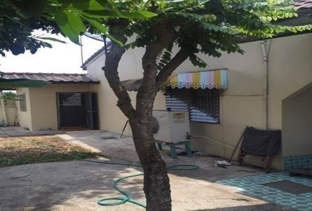 For Sale House 36 sqwa in Nong Chok, Bangkok, Thailand