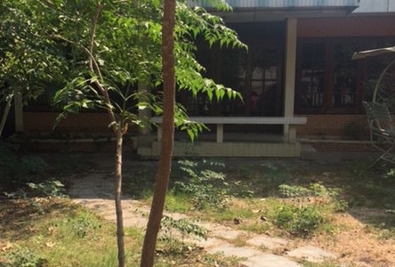 For Rent 2 Beds 一戸建て in Chatuchak, Bangkok, Thailand