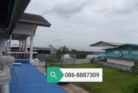 For Sale 20 Beds House in Mueang Pathum Thani, Pathum Thani, Thailand