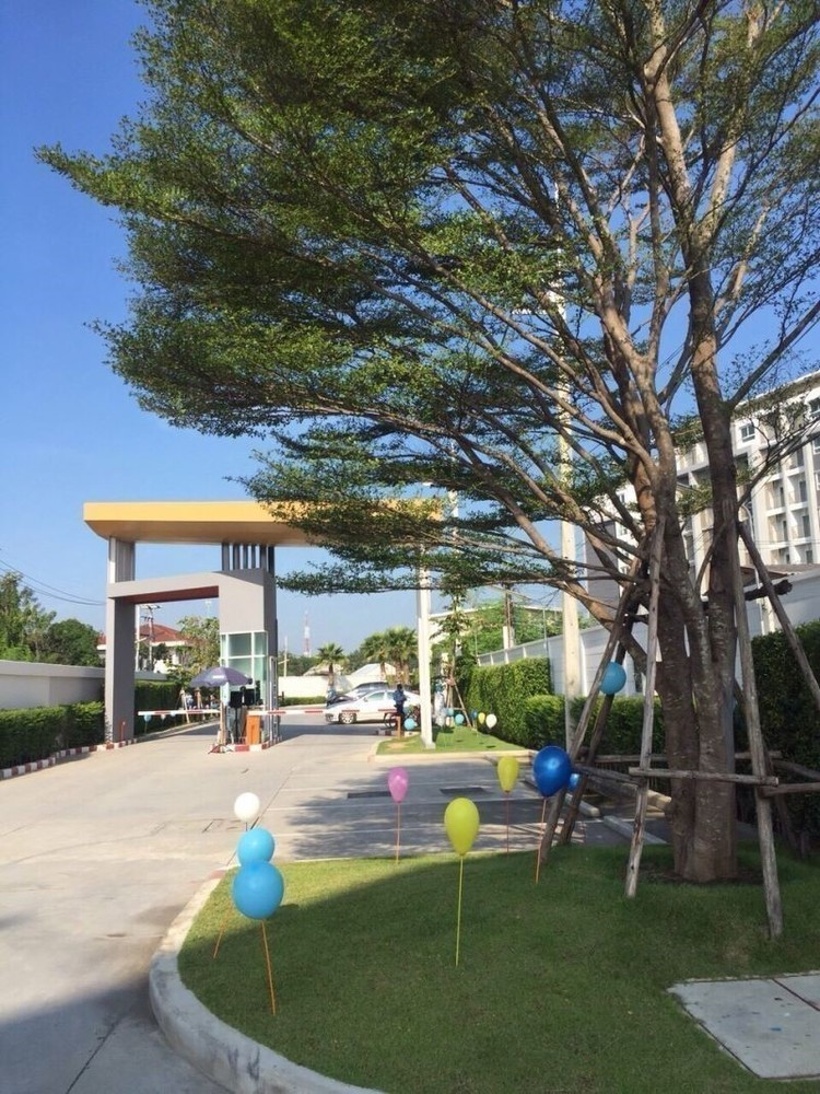 For Sale or Rent コンド 27 sqm in Mueang Nakhon Pathom, Nakhon Pathom, Thailand | Ref. TH-HKQZXMMG