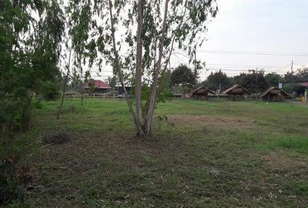 For Sale Land 94 sqwa in Muang Sam Sip, Ubon Ratchathani, Thailand