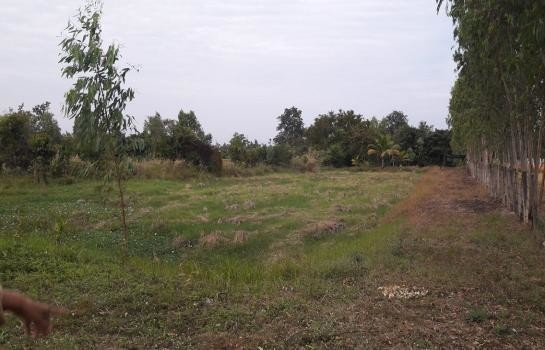 For Sale Land 94 sqwa in Muang Sam Sip, Ubon Ratchathani, Thailand | Ref. TH-YLUOPAKD