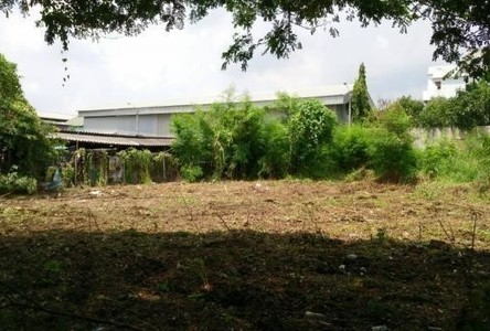 For Sale Land 180 sqwa in Wang Thonglang, Bangkok, Thailand