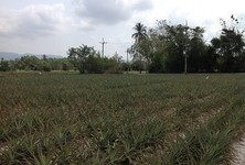 For Sale or Rent Land 111 sqwa in Si Racha, Chonburi, Thailand