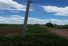 ขาย ที่ดิน 100 ตร.ว. เมืองลำพูน ลำพูน