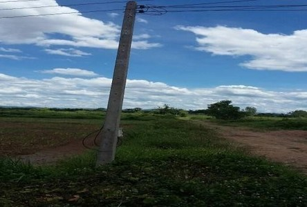 For Sale Land 100 sqwa in Mueang Lamphun, Lamphun, Thailand