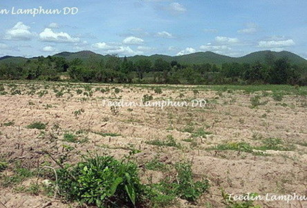 For Sale Land 21 rai in Mae Tha, Lamphun, Thailand