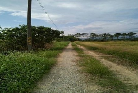 For Sale Land 11 rai in Mueang Chiang Rai, Chiang Rai, Thailand