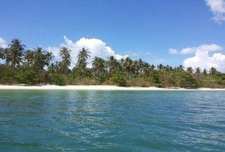For Sale Land 275 rai in Mueang Phuket, Phuket, Thailand