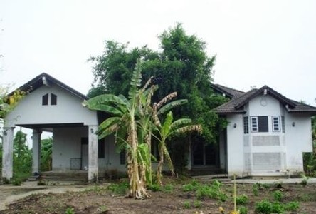 For Sale Land 822 sqwa in Pak Kret, Nonthaburi, Thailand