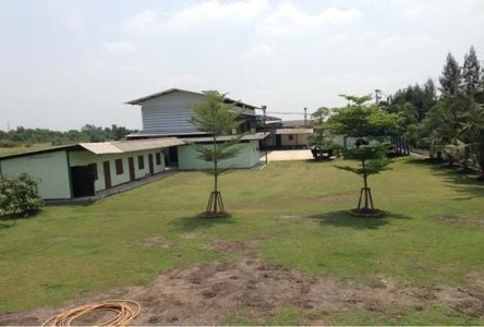 For Sale Warehouse 600 sqwa in Khlong Luang, Pathum Thani, Thailand