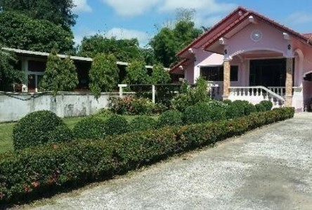 For Sale or Rent 4 Beds House in Chiang Saen, Chiang Rai, Thailand