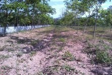 For Sale Land 6 rai in Satuek, Buriram, Thailand