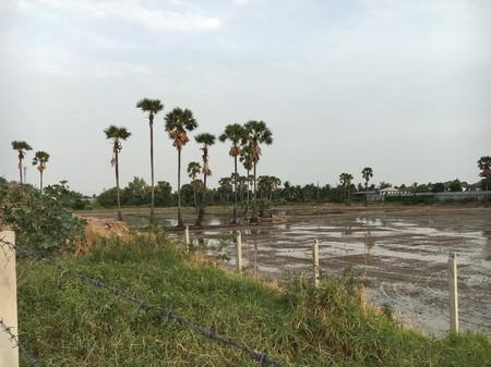 For Sale Land 37 rai in Bang Bua Thong, Nonthaburi, Thailand | Ref. TH-WAQOKXJA
