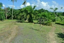 For Sale Land 10 rai in Thalang, Phuket, Thailand