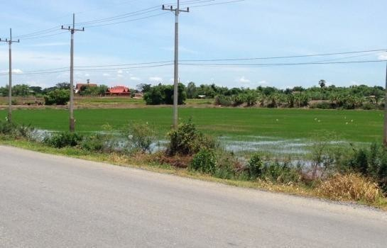 For Sale Land 10 rai in Song Phi Nong, Suphan Buri, Thailand | Ref. TH-UXWZQROM