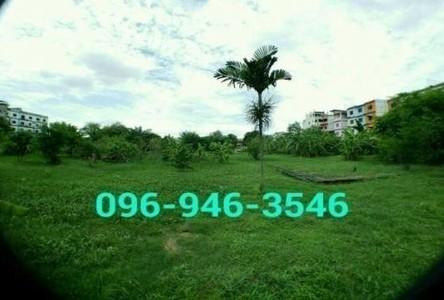 For Sale Land 97 sqwa in Phra Khanong, Bangkok, Thailand