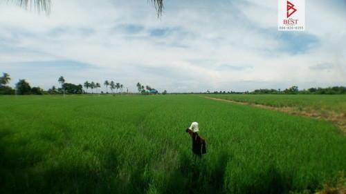 ขาย ที่ดิน 17 ไร่ บางน้ำเปรี้ยว ฉะเชิงเทรา | Ref. TH-CHPXCGTU