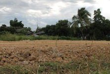 For Sale Land 100 sqwa in San Pa Tong, Chiang Mai, Thailand