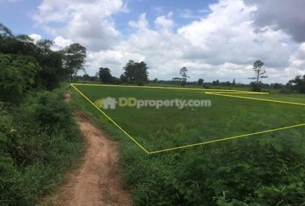 For Sale Land 6 rai in Mueang Khon Kaen, Khon Kaen, Thailand
