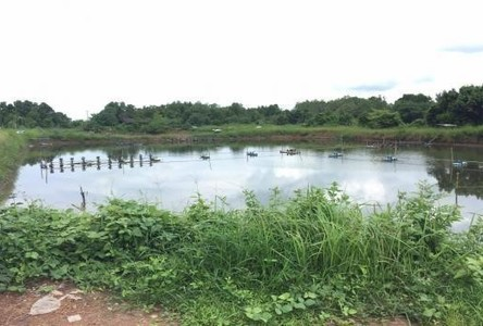 For Sale Land 17 rai in Laem Ngop, Trat, Thailand