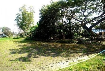 For Sale Land 3 rai in Hang Dong, Chiang Mai, Thailand