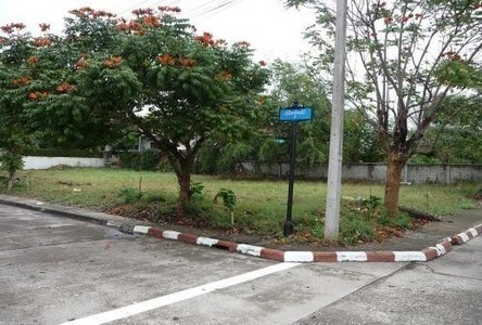 For Sale Land 207.5 sqwa in Hang Dong, Chiang Mai, Thailand