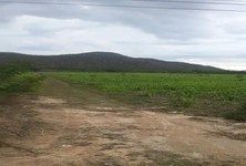For Sale Land 200 sqwa in Tha Yang, Phetchaburi, Thailand