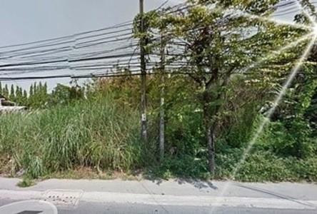 For Rent Land 199 sqwa in Bang Khae, Bangkok, Thailand