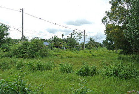 For Sale Land 89 sqwa in Klaeng, Rayong, Thailand