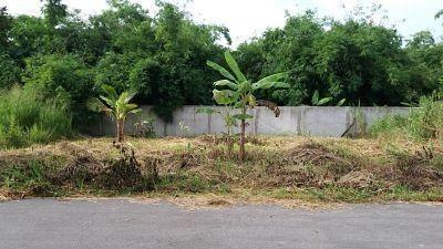 Продажа: Земельный участок 72 кв.ва. в районе Sattahip, Chonburi, Таиланд | Ref. TH-MSEFPNPK