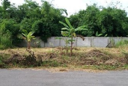 For Sale Land 72 sqwa in Sattahip, Chonburi, Thailand