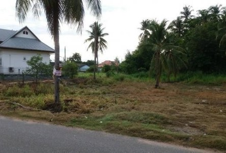 For Rent Land 364 sqwa in Bang Lamung, Chonburi, Thailand