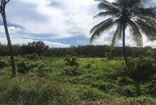 For Sale Land 12 rai in Khlong Hoi Khong, Songkhla, Thailand