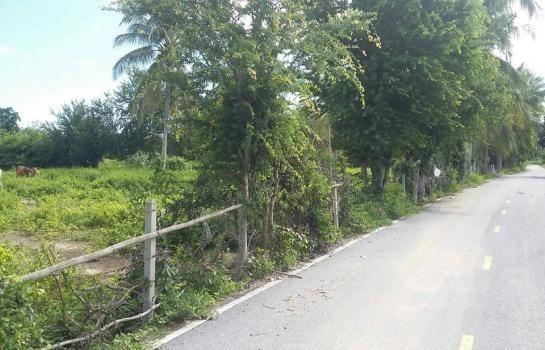 For Sale Land 900 sqwa in Cha Am, Phetchaburi, Thailand | Ref. TH-YNQHCMHV