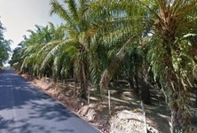 For Sale Land 20 rai in Mueang Krabi, Krabi, Thailand