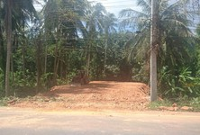 For Sale Land 78 sqwa in Hat Yai, Songkhla, Thailand