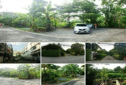 For Sale Land 297 sqwa in Wang Thonglang, Bangkok, Thailand