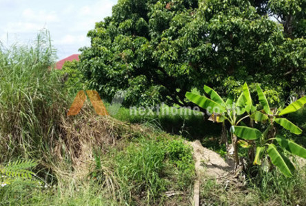 For Sale Land 408 sqwa in Chom Thong, Chiang Mai, Thailand