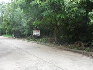 ขาย ที่ดิน 562 ตร.ว. เมืองปทุมธานี ปทุมธานี   Ref. TH-IBHTHZWX