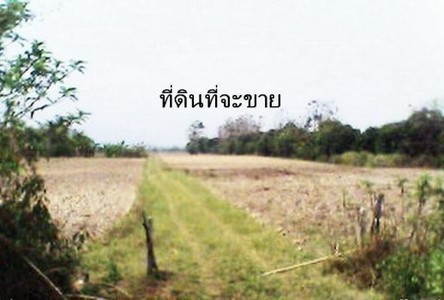 For Sale Land 765 sqwa in Mueang Chiang Rai, Chiang Rai, Thailand