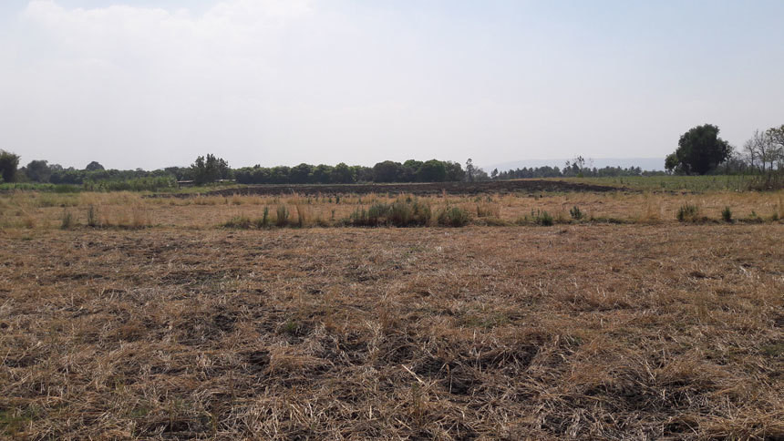For Sale Land 26 rai in Khok Samrong, Lopburi, Thailand | Ref. TH-QNMVDJIH